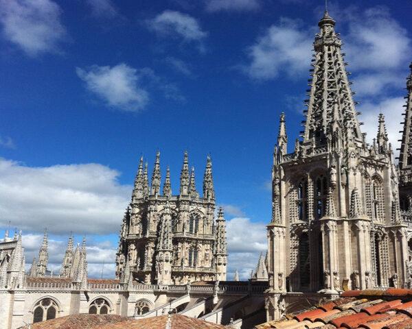Cathedral de Carne